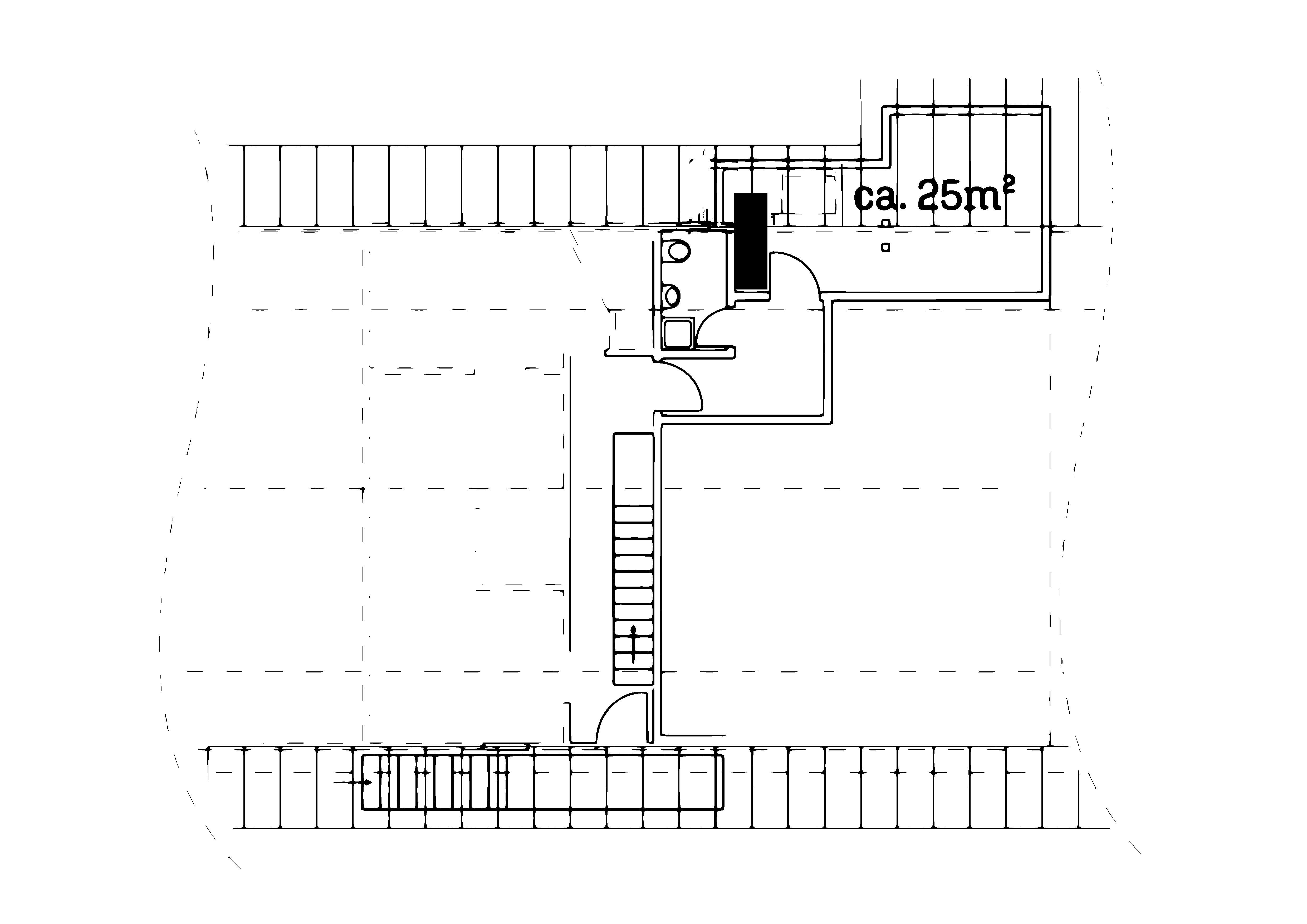 schwalbe_2-kor